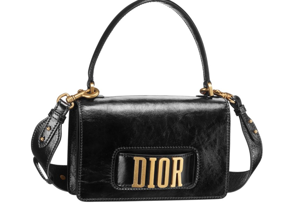 Dior Fall17 Bag - Dio(R)evolution